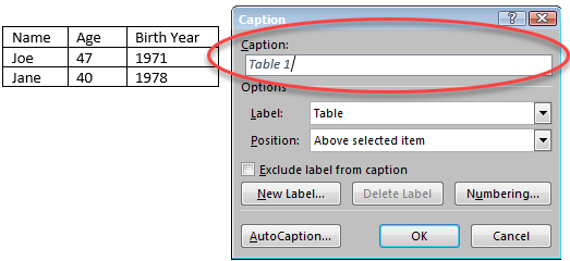 """Example of a table caption via the """"insert caption"""" option in MS Word 2016"""